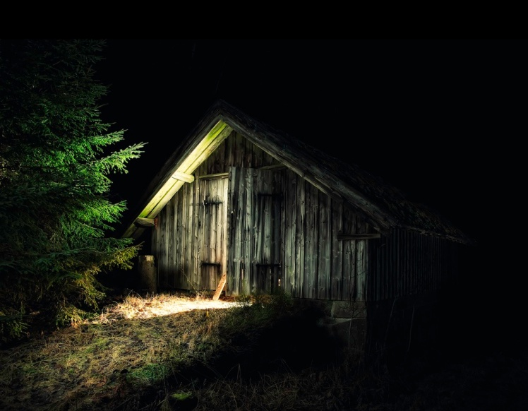 shed night